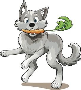 Wolf_fin_jpg
